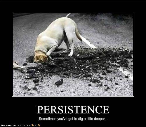Persistence Motivational Quotes: Persistance